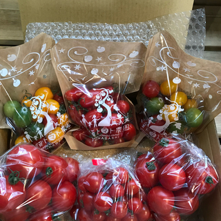 フルティカ&シンディーオレンジ&ミニトマトセット 1.7kg(野菜)