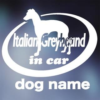 イタリアングレーハウンド in carステッカー、イタグレ、犬ステッカー(犬)