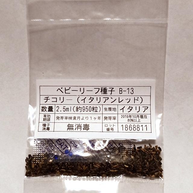 ベビーリーフ種子 B-13 チコリー(イタリアンレッド) 2.5ml x 2袋 食品/飲料/酒の食品(野菜)の商品写真