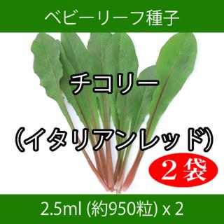 ベビーリーフ種子 B-13 チコリー(イタリアンレッド) 2.5ml x 2袋(野菜)