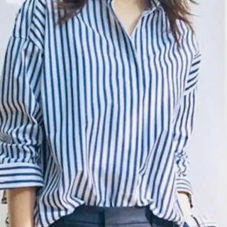 ニジュウサンク(23区)のストライプシャツ 23区 大きいザイズ 19号(シャツ/ブラウス(長袖/七分))