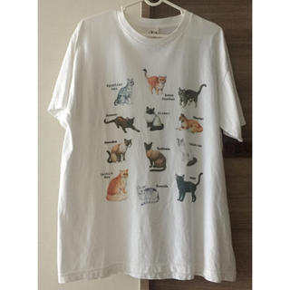 fig London - 猫Tシャツ