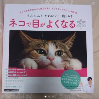 ネコで目がよくなる(健康/医学)