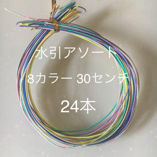水引アソート hanaオススメ8カラー 30センチ(その他)