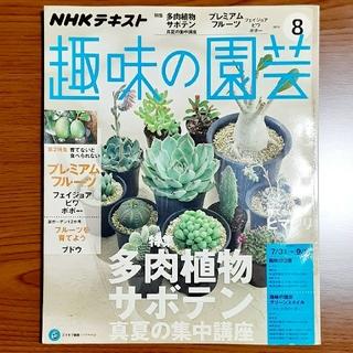 NHK 趣味の園芸 2016年 08月号(専門誌)