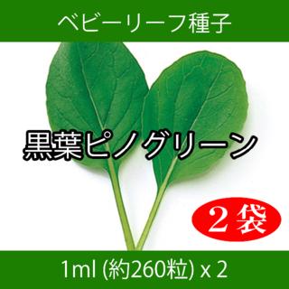ベビーリーフ種子 B-25 黒葉ピノグリーン 1ml 約260粒 x 2袋(野菜)
