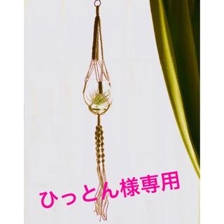 ひっとん様専用 プラントハンガーNo.05 、No.71(プランター)