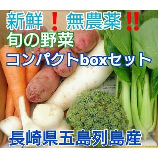 無農薬❗新鮮野菜セット〈コンパクトbox〉(ラインナップのこ確認を) 五島列島産(野菜)