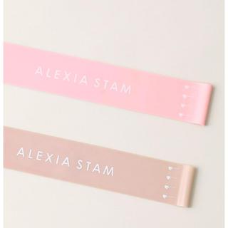 アリシアスタン(ALEXIA STAM)のalexia stam トレーニングバンド 2本(トレーニング用品)