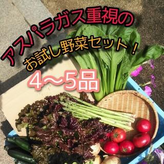 アスパラガス重視の野菜詰め合わせ 4〜5品種 野菜詰め合わせ お試し野菜セット(野菜)