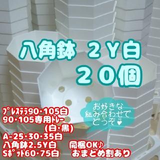 プラ八角鉢 カネヤ【2Y】20個 多肉植物(プランター)