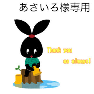 6/11 あさいろ様専用(その他)