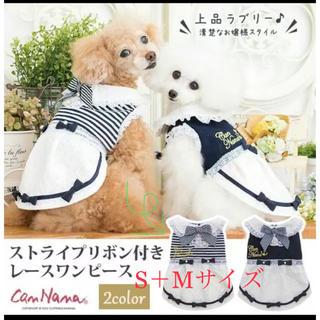 お値下げ!【美品】きゃんナナ 犬服 ボーダー ワンピース フリル リボン(犬)