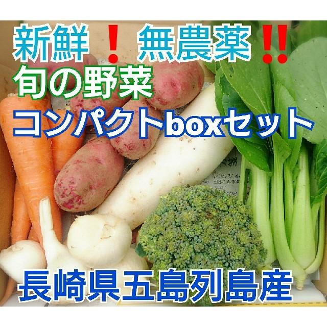 無農薬❗新鮮野菜セット〈コンパクトbox〉(ラインナップのこ確認を) 五島列島産 食品/飲料/酒の食品(野菜)の商品写真