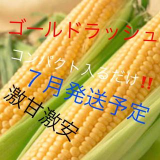 激うまゴールドラッシュコンパクト入るだけ7月発送予定!(野菜)