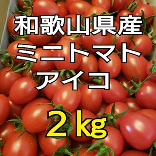 2kg 和歌山県産 ミニトマト アイコ(野菜)