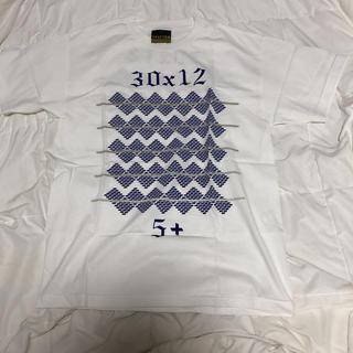 インフォメーション(IN4MATION)のFITTED Tシャツ サイズM Hawaii ALOHA フィテッド(Tシャツ/カットソー(半袖/袖なし))