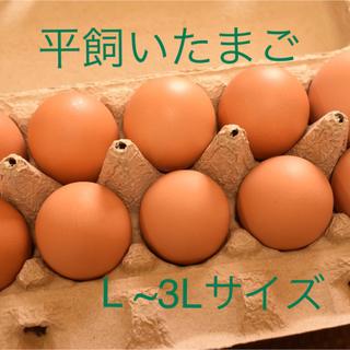 平飼いたまご  L ~3Lサイズ 10個入り3パック 国産もみじの卵(野菜)
