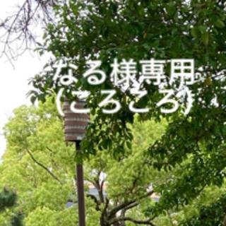 【なるさま専用】鬼滅の刃 竈門禰豆子 口枷(小道具)