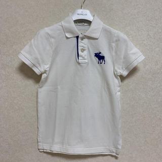 アバクロンビーアンドフィッチ(Abercrombie&Fitch)のアバクロ ポロシャツ s (Tシャツ/カットソー)