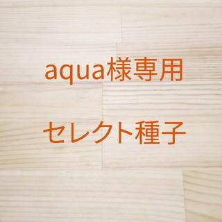 aqua様専用 セレクト種子 12袋(野菜)