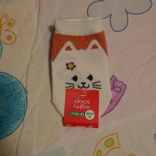クツシタヤ(靴下屋)のネコ 靴下(靴下/タイツ)
