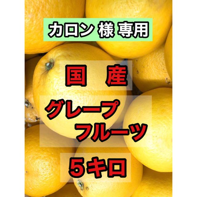 お試し価格! 国産 グレープフルーツ 5キロ 食品/飲料/酒の食品(フルーツ)の商品写真
