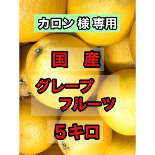 お試し価格! 国産 グレープフルーツ 5キロ(フルーツ)