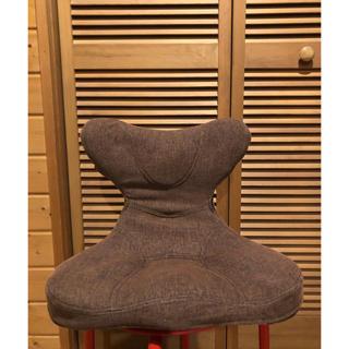 美品❗️ PROIDEA プロイデア 馬具マットプレミアムEX(座椅子)