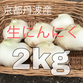 にんにく ニンニク 丹波産 2キロ 最後1箱(野菜)