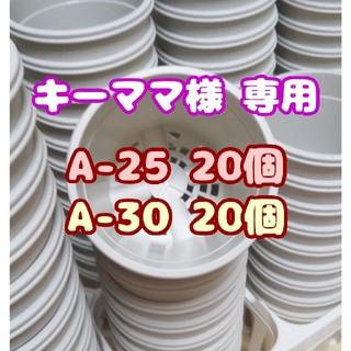 【キーママ様専用】プラ鉢【A-25】20個 他 スリット鉢 プレステラ 多肉(プランター)