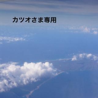 ダカイン(Dakine)の★★DAKINE★ゴーグルケース★(アクセサリー)