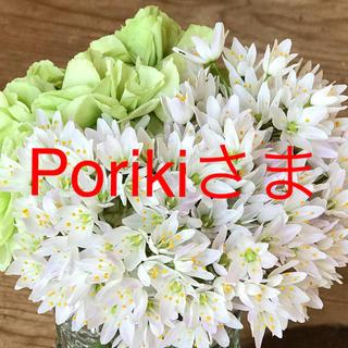 poriki 様専用(その他)