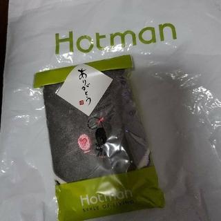 ニシカワ(西川)のホットマン ハンドタオル(タオル/バス用品)