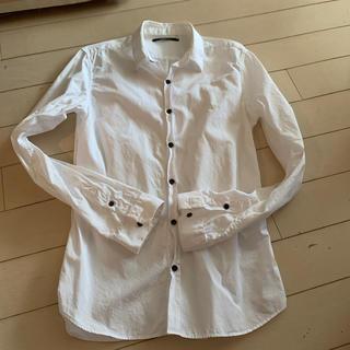 アメリカンラグシー(AMERICAN RAG CIE)の白シャツ(シャツ)