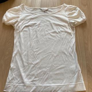 エムプルミエ(M-premier)のM's select ティーシャツ 美品(Tシャツ(半袖/袖なし))