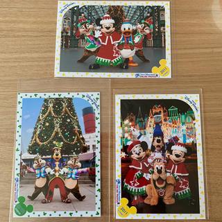 ディズニー(Disney)のスペシャルフォト オンライン限定 ディズニー クリスマス(写真)
