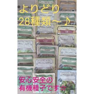 野菜の種 ハーブの種 28種類~選べる 有機種子 種子 種(野菜)