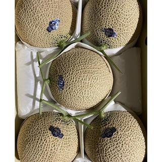 静岡 高級アールスメロン山5玉 隔離栽培 アローマ(フルーツ)