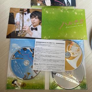 セクシー ゾーン(Sexy Zone)のハルチカ DVD  初回限定盤(日本映画)