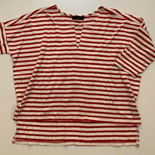 エクリュフィル(ecruefil)の【美品】エクリュフィル ボーダー Tシャツ(Tシャツ(半袖/袖なし))