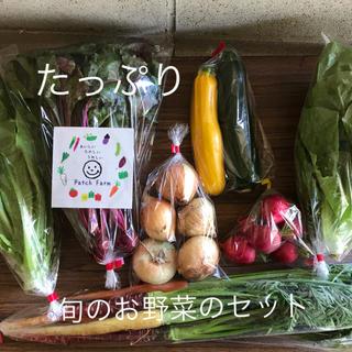 【冷蔵便】たっぷりサイズ旬彩野菜バスケット(野菜)