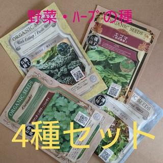 野菜の種 ハーブの種 4種セット 有機種子 種子 種(野菜)