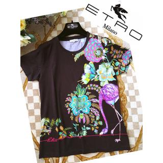エトロ(ETRO)のご専用です☆極美品 ETRO エトロ 洗練 プレシャス 着映え トップス(Tシャツ(半袖/袖なし))