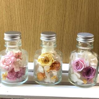 [ミニボトル]ピンク&イエロー ハーバリウム 3本セット(その他)