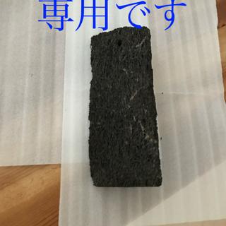 天然ヘゴ板 ヘゴ板 着生蘭 コウモリ蘭 観葉植物(その他)