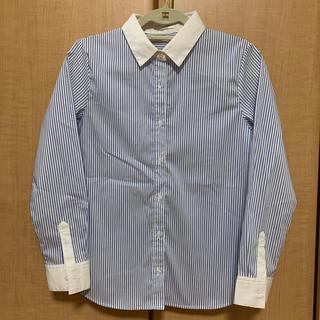 アオヤマ(青山)の水色ストライプシャツ(シャツ/ブラウス(長袖/七分))