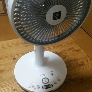 シャープ(SHARP)の扇風機 シャープ 2019年製 pj-jd2ds(扇風機)