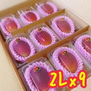 宮崎県産 完熟マンゴー 2L x 9パック(フルーツ)