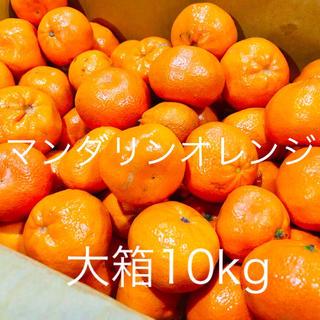 マーコットマンダリン オレンジ10kg 訳あり激安 全国送料込み(フルーツ)